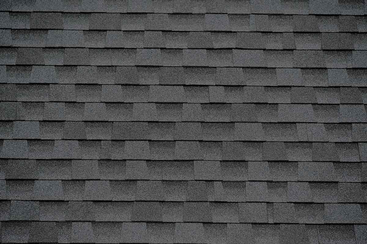 roof and window repair ga